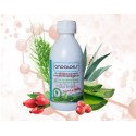 Aloe Collagen Booster